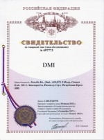 3.4. Trade mark DMI in Russia